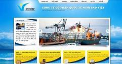 Thiết kế website Công ty Cổ phần Ngôi Sao Việt Hải Phòng